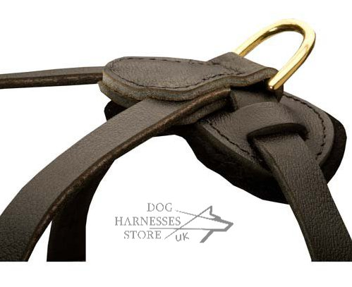 Leather Tracking Dog Harness Uk