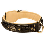 Royal Dog Collar UK of Black Leather, Nappa Padded, Decorated