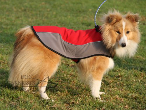 Nylon Dog Coat UK