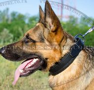 Soft Dog Collar for German Shepherd, Padded Leather
