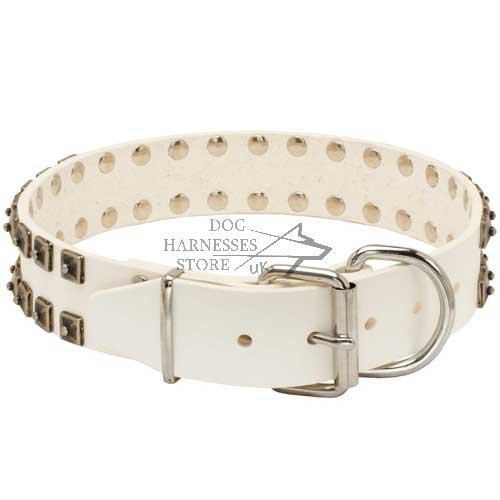 Studded Dog Collar, White Leather
