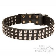 Leather Dog Collar UK with Nickel Pyramids Decoration in 3 Rows