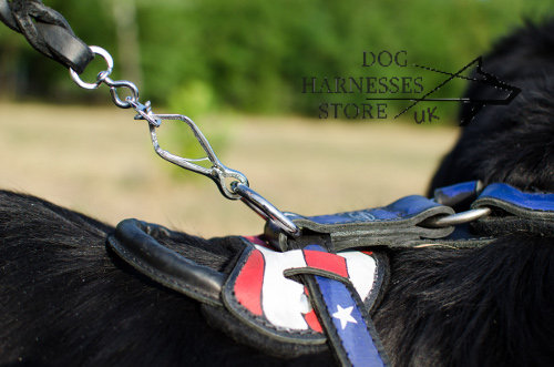 Newfoundland Training Harness