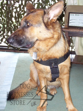 Adjustable Dog Harness for German Shepherd UK