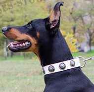 White Leather Dog Collar with Blue Stones for Doberman