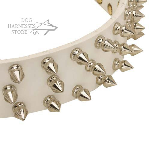 White Spiked Dog Collar