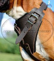 Attack, Agitation Leather Dog Harness for German Boxer