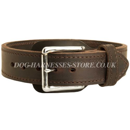 Collars for Labradors