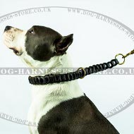 Amstaff Dog Collar of Fine Braided Leather for Good Behavior