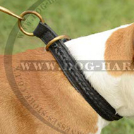 Amstaff Dog Collar of Braided Leather for Control and Obedience