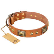 "Artisan Dog Collar of Tan Leather ""Saucy Nature"" Skulls, Plates"