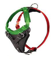 How to Size a Dog Harness