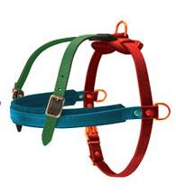 How to Size Dog Harness