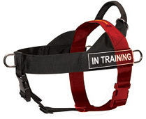 how do i measure for a dog harness