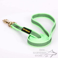 Basic Nylon Dog Leash with Non-Slipping Rubber Lines