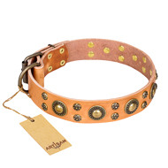 "Beige Leather Dog Collar by FDT Artisan ""Sophisticated Glamor"""