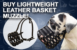 Best Breathable Dog Muzzle