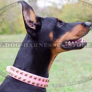 Best Dog Collar for Doberman of Pink Leather, Female Design