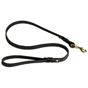 Best Dog Leash and Harness