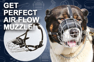 Best Wire Basket Dog Muzzle