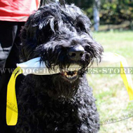 Fire Hose Bite Tug for Black Russian Terrier Training