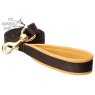 Nylon Dog Leash with Comfortable Material on the
