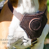 Leather Beagle Dog Harness for Comfort Walking