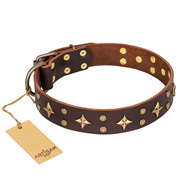"Brown Leather Dog Collar ""High Fashion"" with Stars, FDT Artisan"