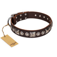 "Brown Leather Dog Collar FDT Artisan ""Pierian Spring"""