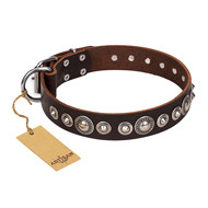"Brown Leather Dog Collar ""Step and Sparkle"" with Studs, Artisan"