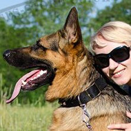Buy New Dog Collars for Strong German Shepherd Dog Style