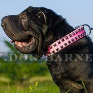 Collar for Shar-Pei Dog Female of Pink Leather with Nickel Studs