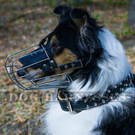 Collie Dog Muzzle for Comfortable and Safe Walking