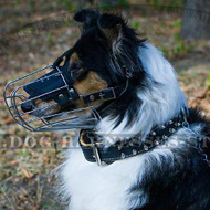 Royal Double-Ply Leather Dog Collar with Spiked Decor for Collie