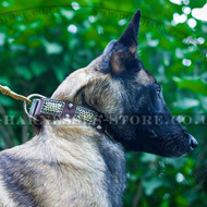 Belgian Malinois Decorative Leather Dog Collar Antique Style