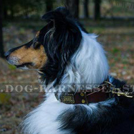 Decorative Leather Dog Collar Relief Plates & Cones for Collie
