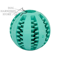 Dental Dog Ball  with Mint Flavor for Oral Care and Chewing