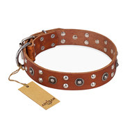 "Designer Dog Collar of Tan Leather ""Silver Elegance"" FDT Artisan"