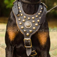 Doberman Leather Harness Nappa Padded with Brass Hardware
