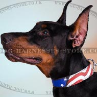Doberman Pinscher Leather Collar with Stars and Stripes Ornament