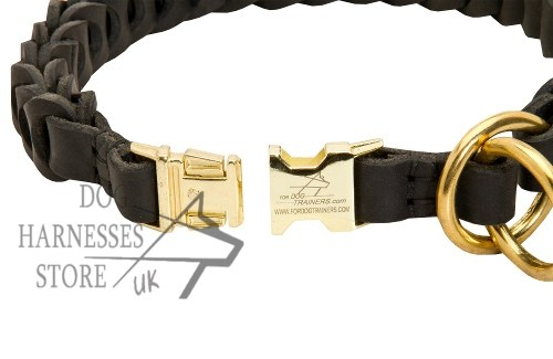 Dog Choke Collar, Leather Braided