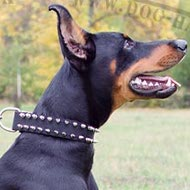 Dog Collar for Doberman Pinscher, Nylon with Two Rows of Spikes