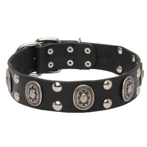 Dog Collar UK Handmade