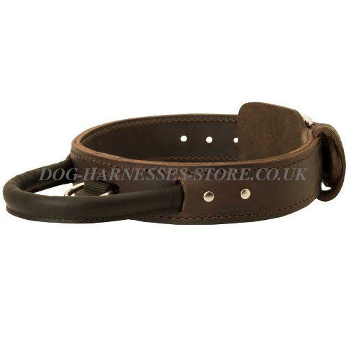 Doberman Collars UK