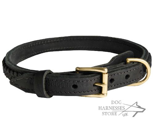 Braided Dog Collars UK