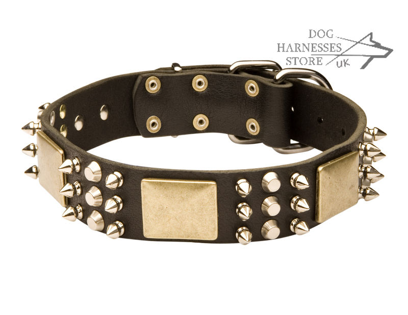 Designer Dog Collar For Belgian Shepherd Leather Spikes