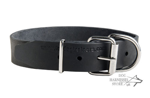 Dog Collar Name Plate