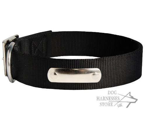 Nylon Dog Collar with ID Tag