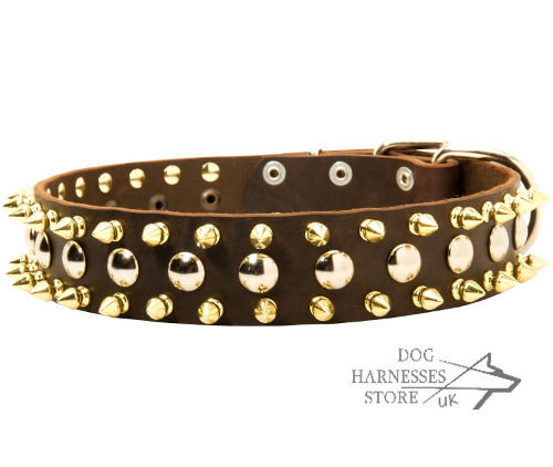 Exclusive Dog Collar UK