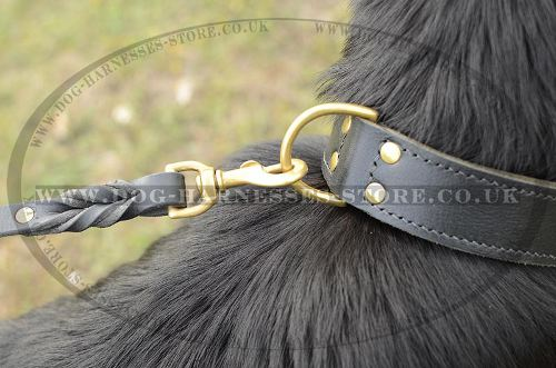 Wide Dog Collar